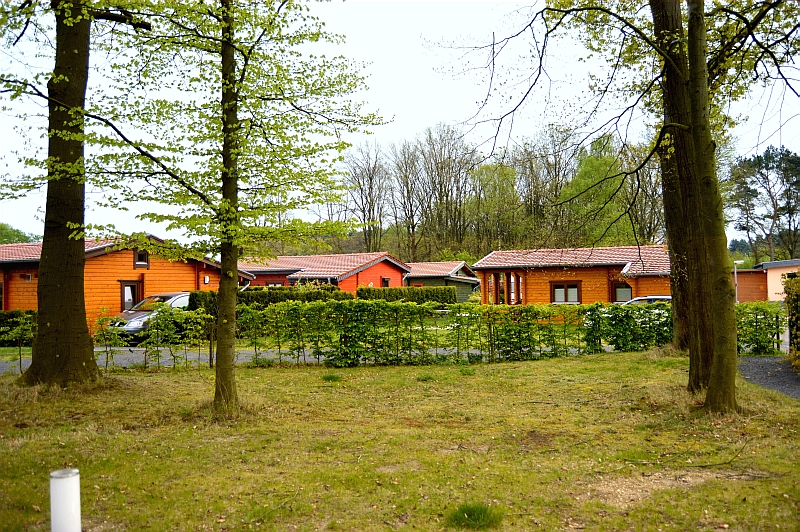 /fileadmin/user_upload/campingbrachterwald/brachterwald.jpg